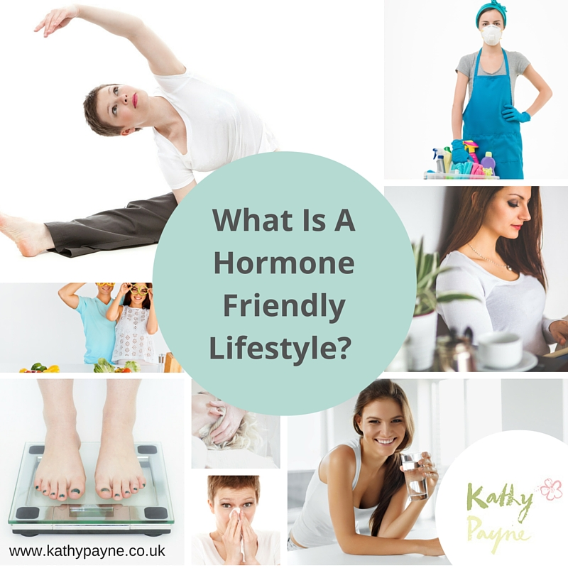 what is a hormone friendly lifestyle? - kathy payne, Human Body